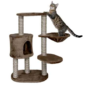 Must-Have Luxury Item for Kitties
